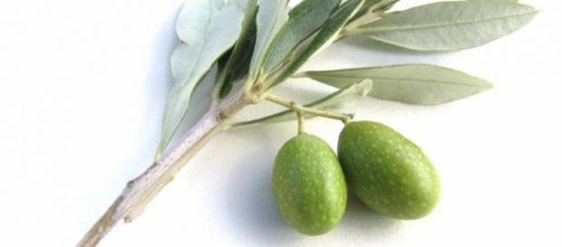 Pressione alta: i rimedi naturali efficaci   Tanta Salute - tantasalute.it