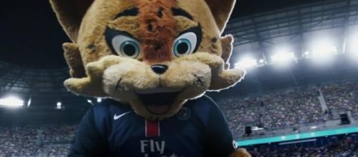 Le Lynx, petit cousin du Footix (Crédit - DR).
