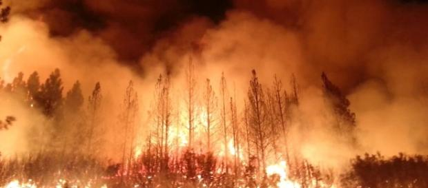 California also suffered extreme wildfires in 2013. File photo of US Department of Agriculture/Public Domain