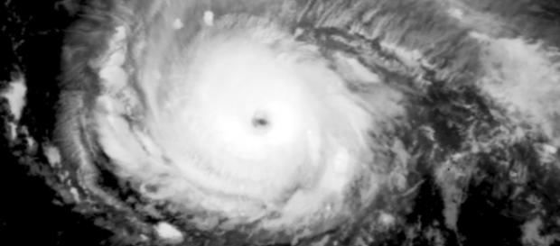 Hurricane Irma intensifying into a Category 4 Tropical Storm. (Image by the Naval Research Laboratory/Wikimedia Commons)