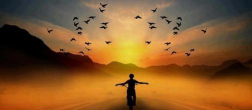 Liberdade é a sensação de estar livre e não depender de ninguém. www.google.com.br