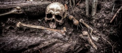 The death remains a mistery, Pixabay https://pixabay.com/en/skull-bones-skeleton-head-death-2525192/