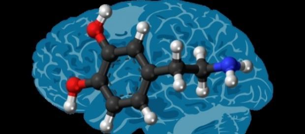 La dopamina, il neurotrasmettitore carente nel Parkinson (https://goo.gl/SfCp5z)