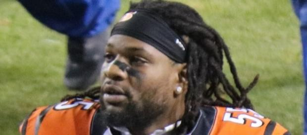 Vontaze Burfict [Image by Jeffrey Beall|Wikimedia Commons| Cropped | CC BY-3.0 ]