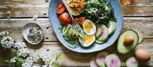Rules you need to follow in order to lose weight Food, Salad, Diet, Healthy   Free for commercial use   Photo via StockSnap, pixabay.com