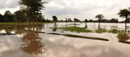 Flooding, Image via Pixabay...