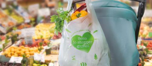 Sacchetti biodegradabili obbligatori e a pagamento, ecco chi ci guadagna