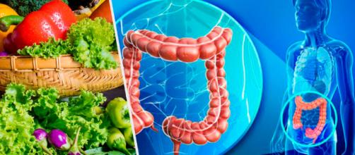 Aumenta la cantidad de bacterias benéficas en tus intestinos ... - mejorconsalud.com