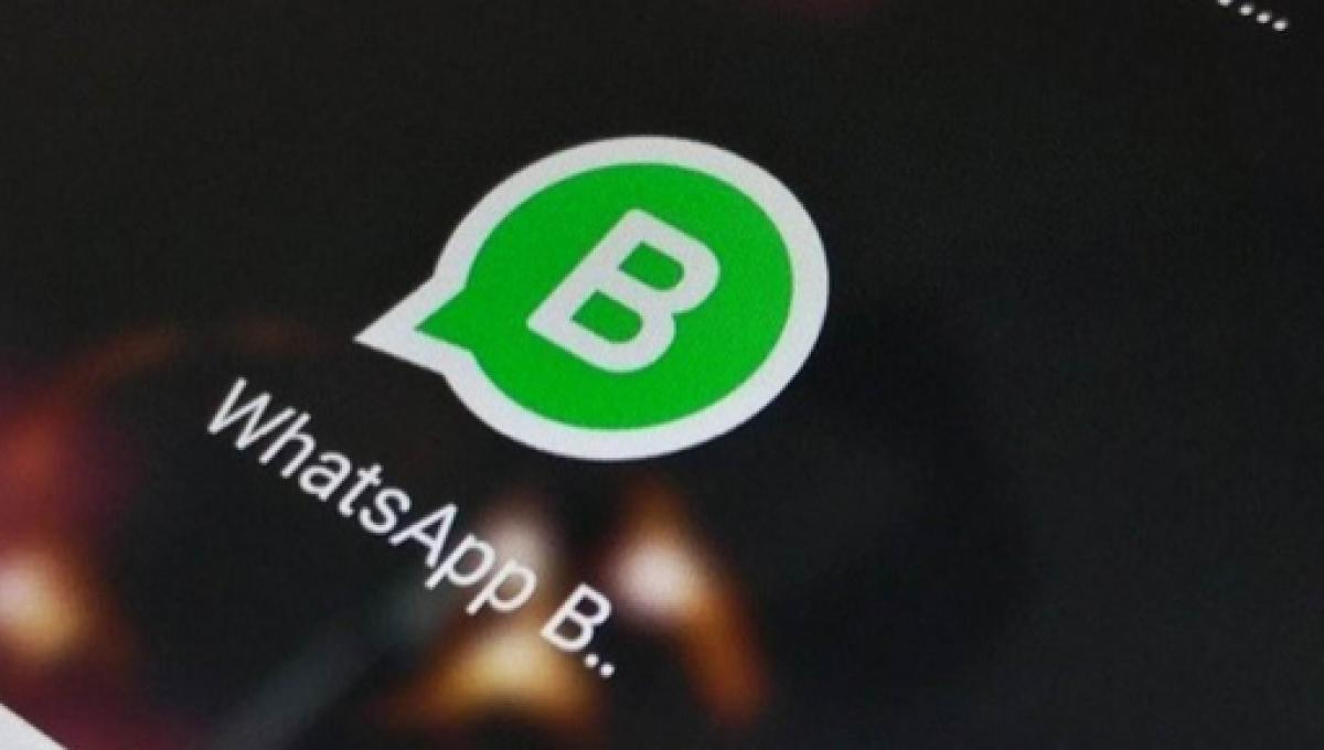 Whatsapp Business Il Servizio Si Utilizzerà Anche Con Un Numero Di