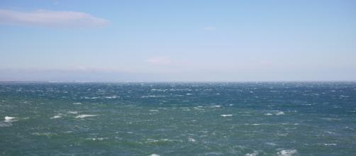 Dans la Manche, un navire de pêche secourt quatre migrants – actu.fr - actu.fr