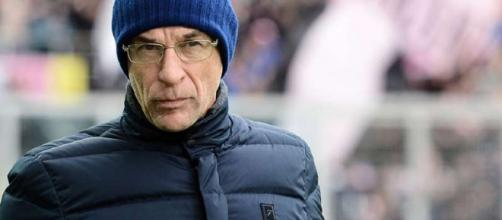 Davide Ballardini, allenatore del Genoa