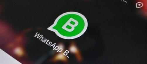 WhatsApp Business sarà un'app indipendente da WhatsApp Messenger (fonte foto https://static.toiimg.com)