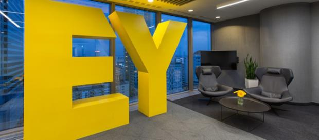 EY: Purpose, Not profit, is Business Leaders' Key to Success - diversityinc.com