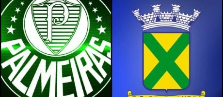 Palmeiras x Santo André ao vivo hoje