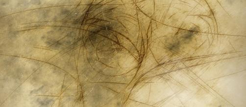 Aesthetics is the culmination, not the art world. (Image via Geralt/Pixabay)