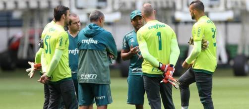 Foto: Cesar Greco / Facebook Oficial SE Palmeiras