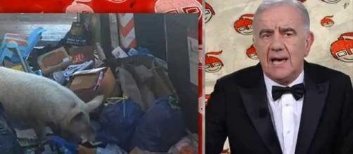 Gene Gnocchi si scusa per la battuta su Petacci maiale, ma Forza Nuova gli promette il manganello