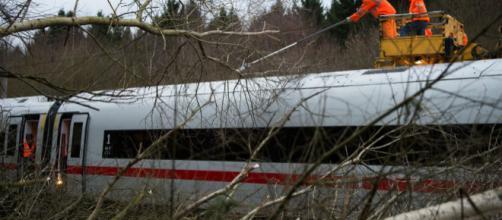 Un tren de alta velocidad entre árboles caídos entre Hannover y Goettingen en Baja Sajonia el jueves