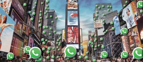 Lançamento do novo WhatsApp promete bombar os negócios