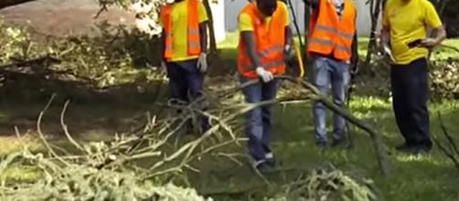 Volontari al lavoro in un'area verde