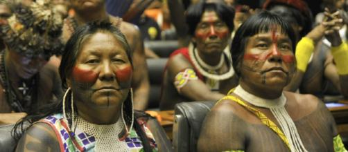 CPAL Social || Derechos Humanos - cpalsocial.org