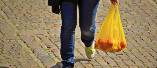 Plastic Bags - Image credit - Public Domain   Pixabay