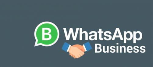 WhatsApp Business 'An Upcoming App to Boost E-Commerce ... - mobileappdaily.com