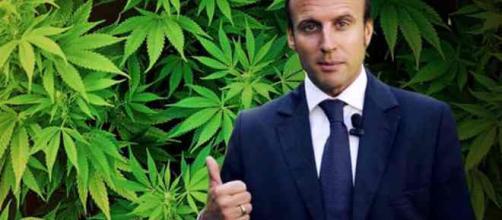 Dépénalisation du cannabis : Emmanuel macron retourne sa veste