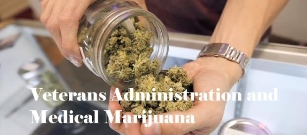 Five Things Medical Marijuana Won't Tell You (Image Cr: Wall Street Journal- YouTube Cap)