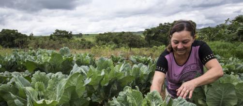 Agricultora mostra com orgulho o resultado do seu trabalho