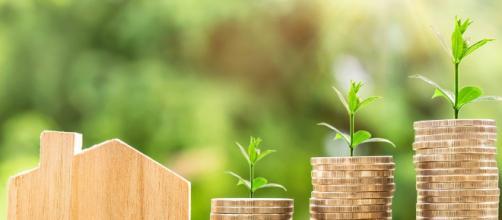 Bonus Verde 2018: la guida per capire chi può usufruirne