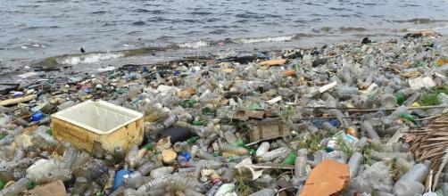 deja de recibir desechos plásticos de todo el mundo y el planeta ... - clarin.com