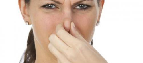 Fatores que levam a região íntima ter mau cheiro - Google