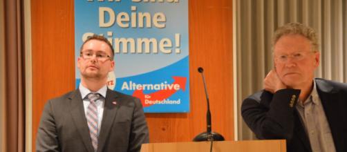 Alternativa para Alemania no termina de crecer en los sondeos electorales en Alemania