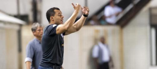 Treinador sofreu sua primeira derrota no comando do Santos