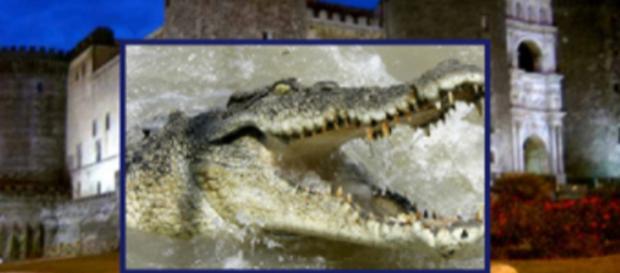 La leggenda del coccodrillo del Maschio Angioino
