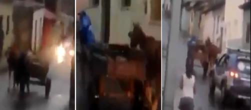 Catador é humilhado pela policia (Foto: Captura de vídeo)