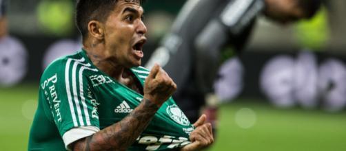 Dudú tendrá el papel de capitán en el Palmeiras y se siente bien.
