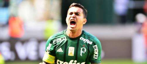 Jogador decidiu ficar no Palmeiras
