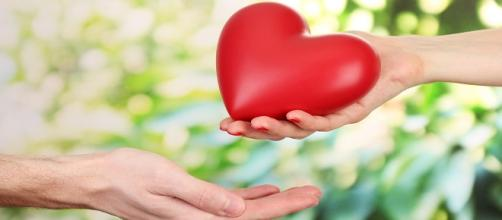 ¿Te sientes satisfecho con el afecto que recibes de tu pareja?