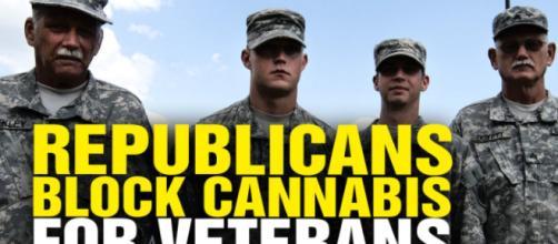 Veterans and marijuana - Image credit - Natural News | Vimeo