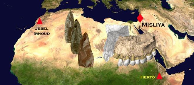 O nouă descoperire antropologică poate schimba întreaga istorie a omenirii