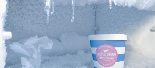 Fill the freezer. - [Photo by Dev Benjamin on Unsplash]