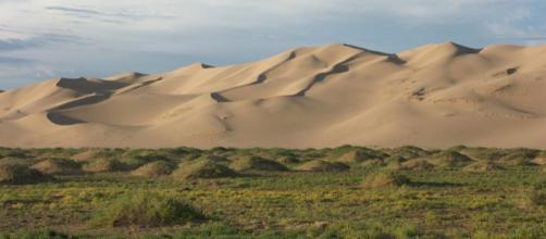 La Muralla verde frente al desierto de Gobi esta creciendo