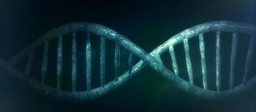 Scoperta molecola in grado di agire sul Dna malato.