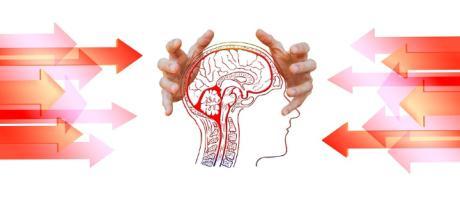 Allenare il cervello regista del benessere