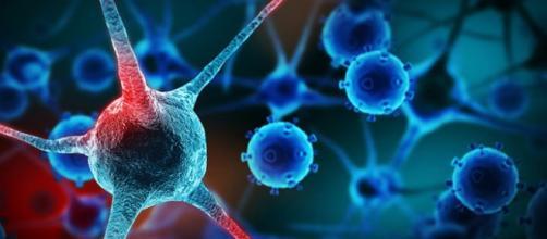 La fusione di due geni causa il tumore: la scoperta di due scienziati italiani