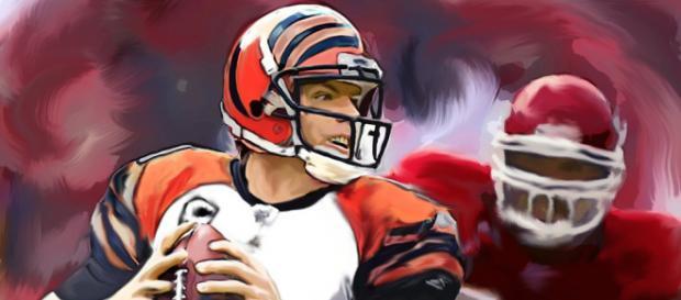 Carson Palmer hangs it up after 15 seasons in the NFL - Jack Kurzenknabe via Flirckr