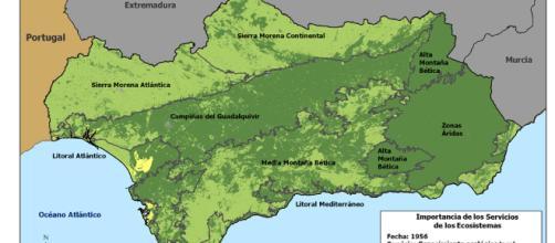 Evaluación de Ecosistemas del Milenio en Andalucía :: Consejería ... - juntadeandalucia.es