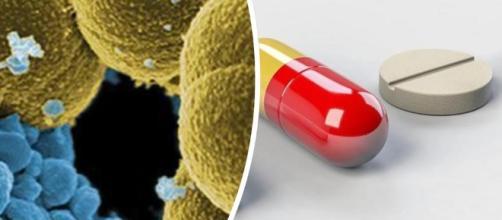 """Infezioni resistenti agli antibiotici, allarme Oms: """"Nel 2025 un ... - leggo.it"""